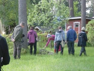 Luonnonkukkien päivä -retki 2014