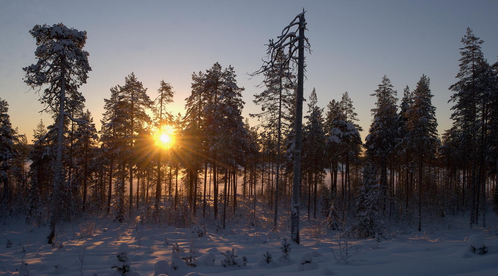 Kuva: Jukka Eskelinen