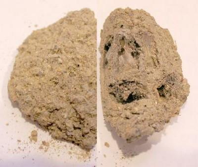 kivikoti